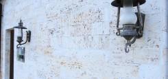 Calcar-cochilifer---Piatra-Dobrogeana-2