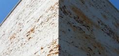 Calcar-cochilifer---Piatra-Dobrogeana-5